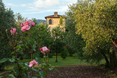 Villa Il Paradisino - Sesto F.no