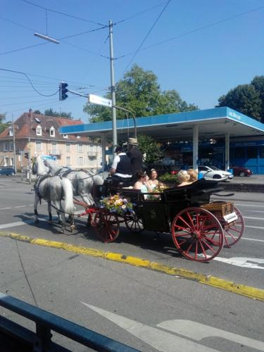 Karlsruhe - Wedding carriage