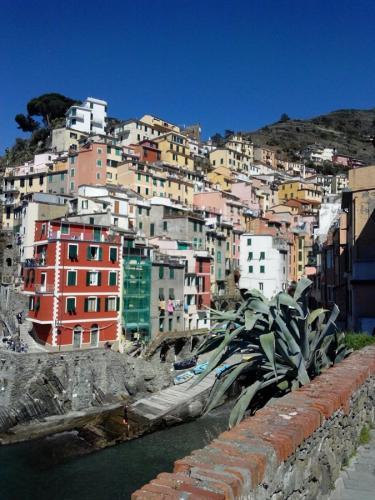 Rio Maggiore-porticciolo-Cinque Terre