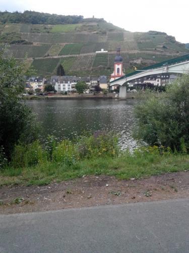 Mosel-Stellplatz-CampingPark