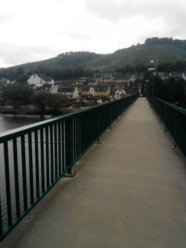 Mosel - View from the bridge to Zell/Mosel